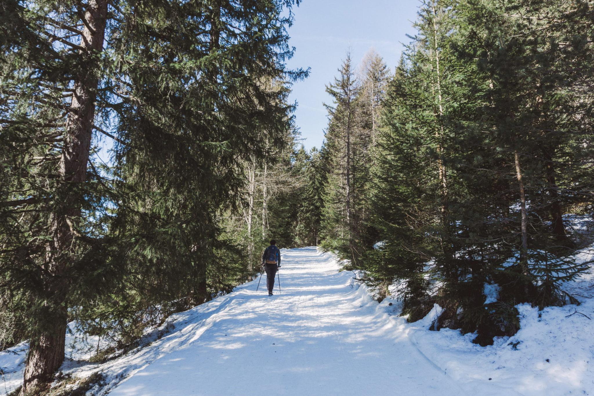 Sentiero 9 - da Ortisei a Resciesa - Foto © Dolomiti Review