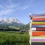 Una Montagna di Libri a Cortina, estate: programma degli eventi