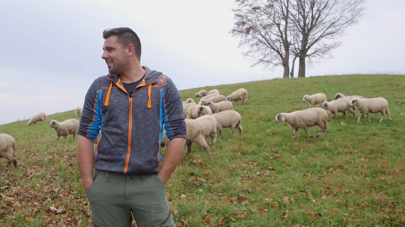 Sebastiano Fullin e le sue pecore, in Alpago