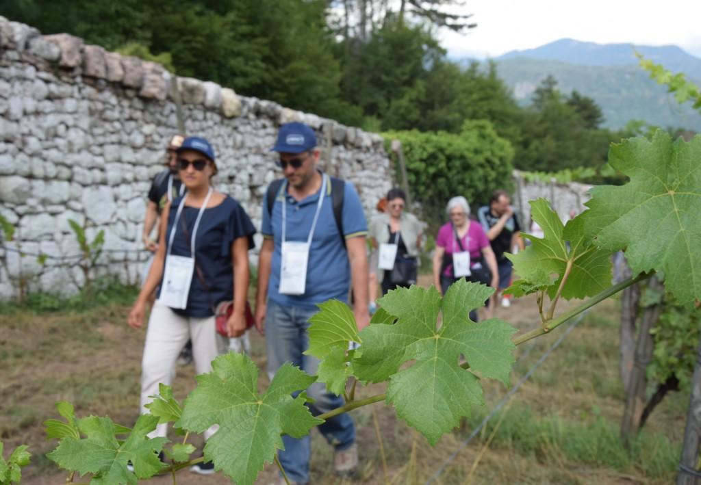 Eventi enogastronomici in Trentino