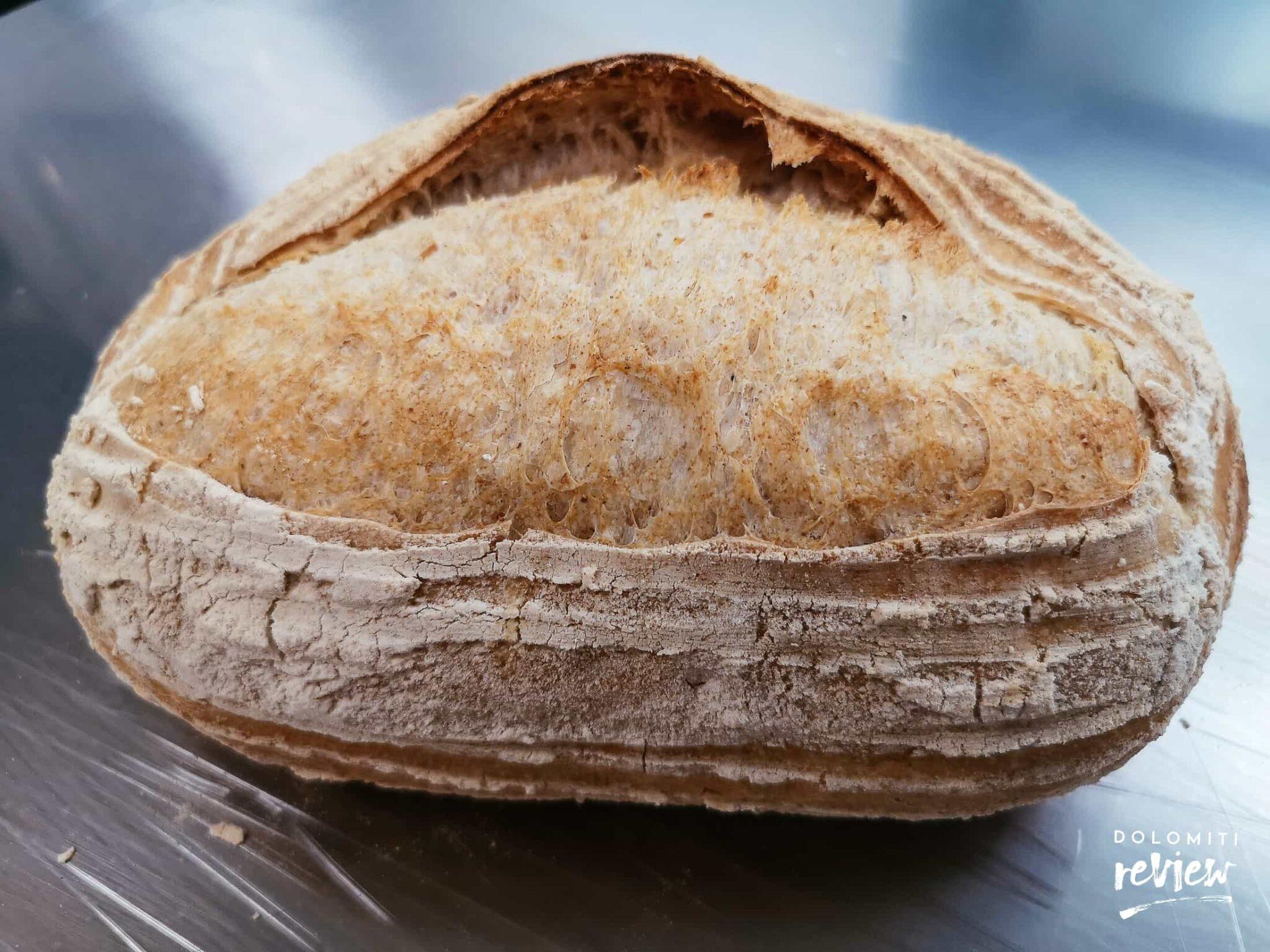 Pane della pizzeria La Fenice